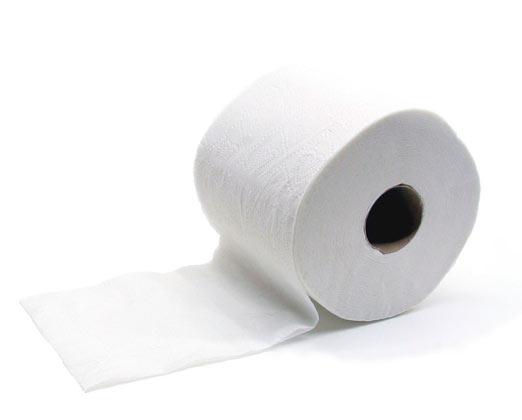 Nace el papel higiénico