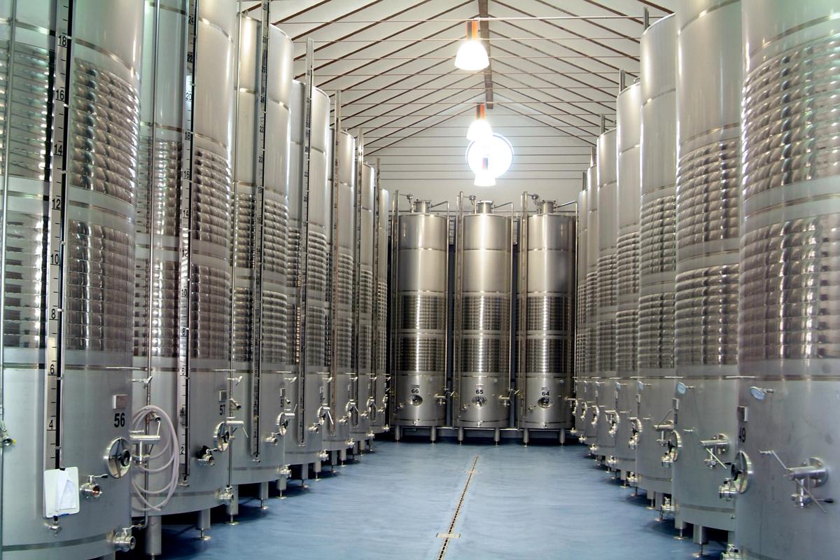 Bodegas Yuntero termina la vendimia con una producción récord de 100 millones de kilos de uva
