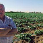 Cristóbal Jiménez Serrano, Presidente Interprofesional de Melón y Sandía de Castilla-La Mancha