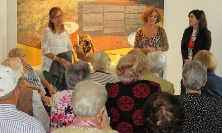 Numerosos grupos apuestan por los atractivos turísticos de Manzanares