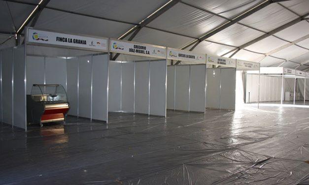 La I Feria Regional del Queso Manchego tendrá 15 expositores y numerosas actividades paralelas