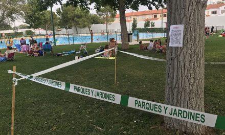 """""""La plaga de galeruca de la piscina municipal está prácticamente erradicada"""""""