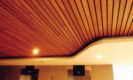 Falsos techos (1ª Parte)