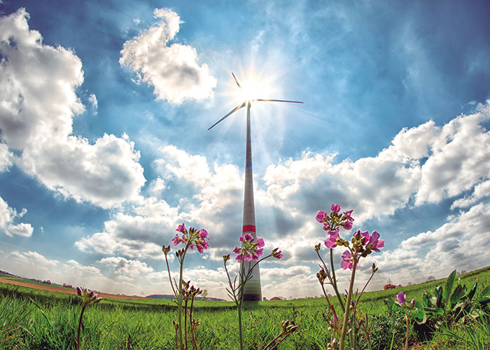 Energías Renovables. Presente y futuro