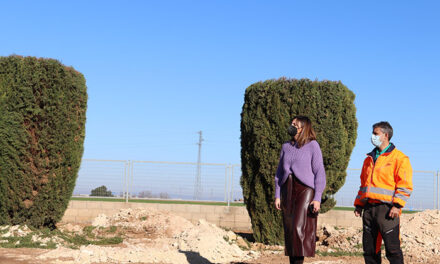 El Ayuntamiento de Manzanares pone en marcha el proyecto de replantación de cipreses para regenerar las zonas verdes del Polígono