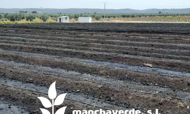 Manchaverde S.L: Uno de los mayores  productores de humus de lombriz de Europa